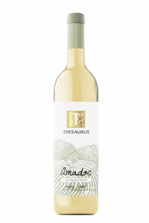 thesaurus-amadoc-sauvignon-blanc